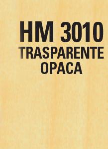 HM 3010